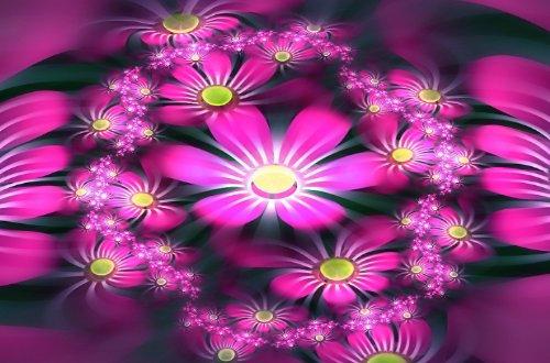 NICE WALLPAPERS: Cool Flowers Wallpapers (Pack 2)