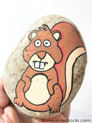 painted rock stone squirrel
