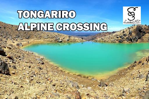 Tongariro Alpine Crossing by Buddhima Wickramarachchi – Auckland