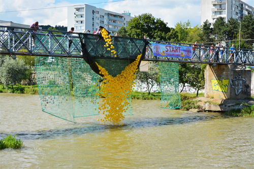 Rubber duck are being dumped in the river