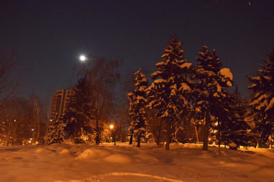 Iarna Winter Inverno Invierno Tél χειμώνας