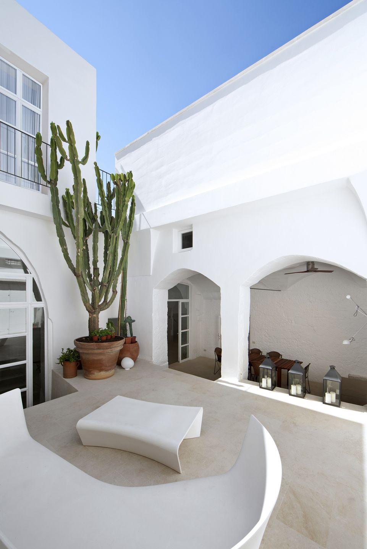 Enorme cactus en el patio de la casa de una pareja de arquitectos