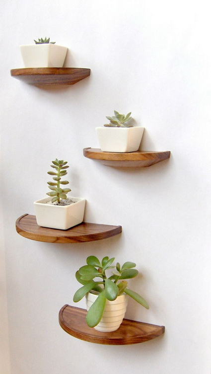 How To Using Plants Decorating Ideas For Interiors 6