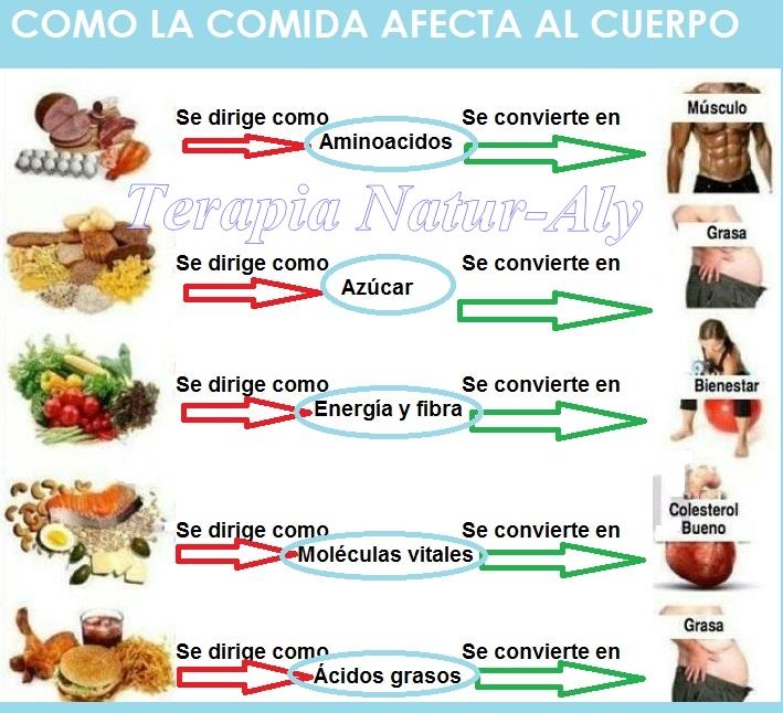 Terapia Natur Aly: Como afecta la comida al cuerpo