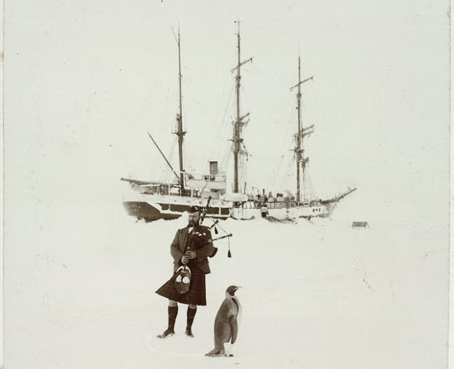Photo Kerr playing the bagpipes for a penguin. 1904 Antarctic expedition. Photo from the William Speirs Bruce Collection U of Edinburgh.Indifferent Penguin and other stories of penguins. marchmatron.com