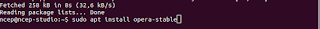 Install paket opera-stable