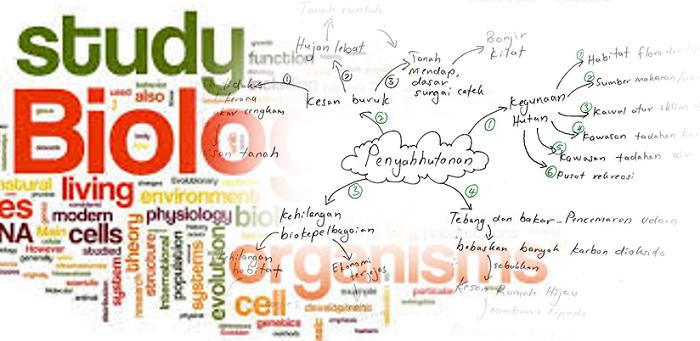 Download nota ringkas biologi tingkatan 4 pdf online