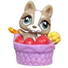 Littlest Pet Shop Teensies German Shepherd (#T138) Pet