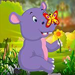 G4K Cute Hippo Calf Escape
