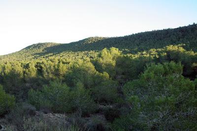 Iniciado el procedimiento de declaración de Paisaje Protegido de la Sierra Escalona