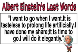 Albert Einstein Biography In Hindi