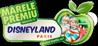 Castiga o excursie la Disneyland Paris