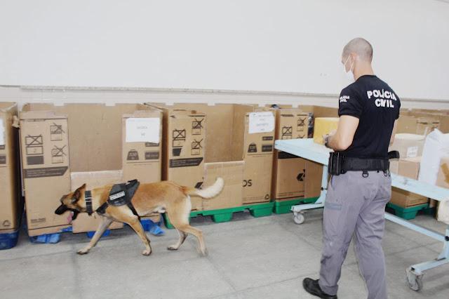 Polícia Civil realiza fiscalização com cães farejadores em Mossoró, RN