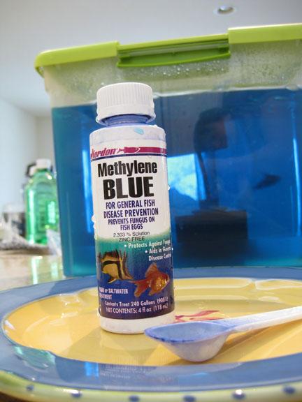 methylene blue fish medication