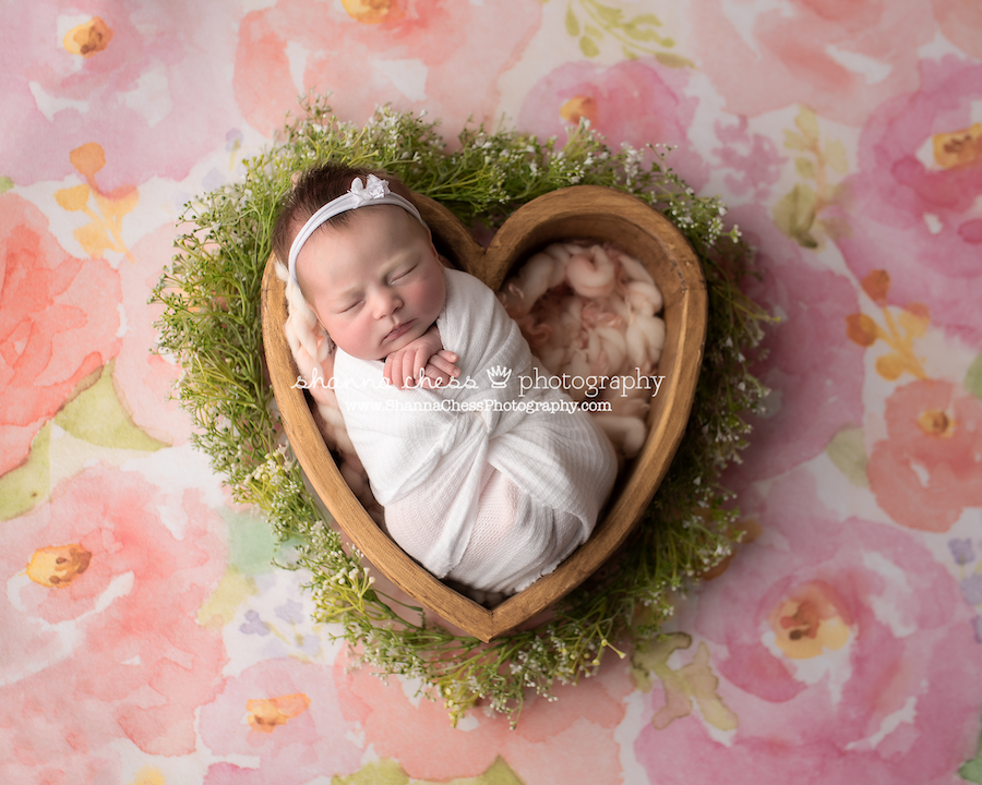 Eugene Springfield OR newborn photographer