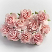 http://scrapandcraft.co.uk/flowers/382-mulberry-paper-open-roses-x10-light-pink.html