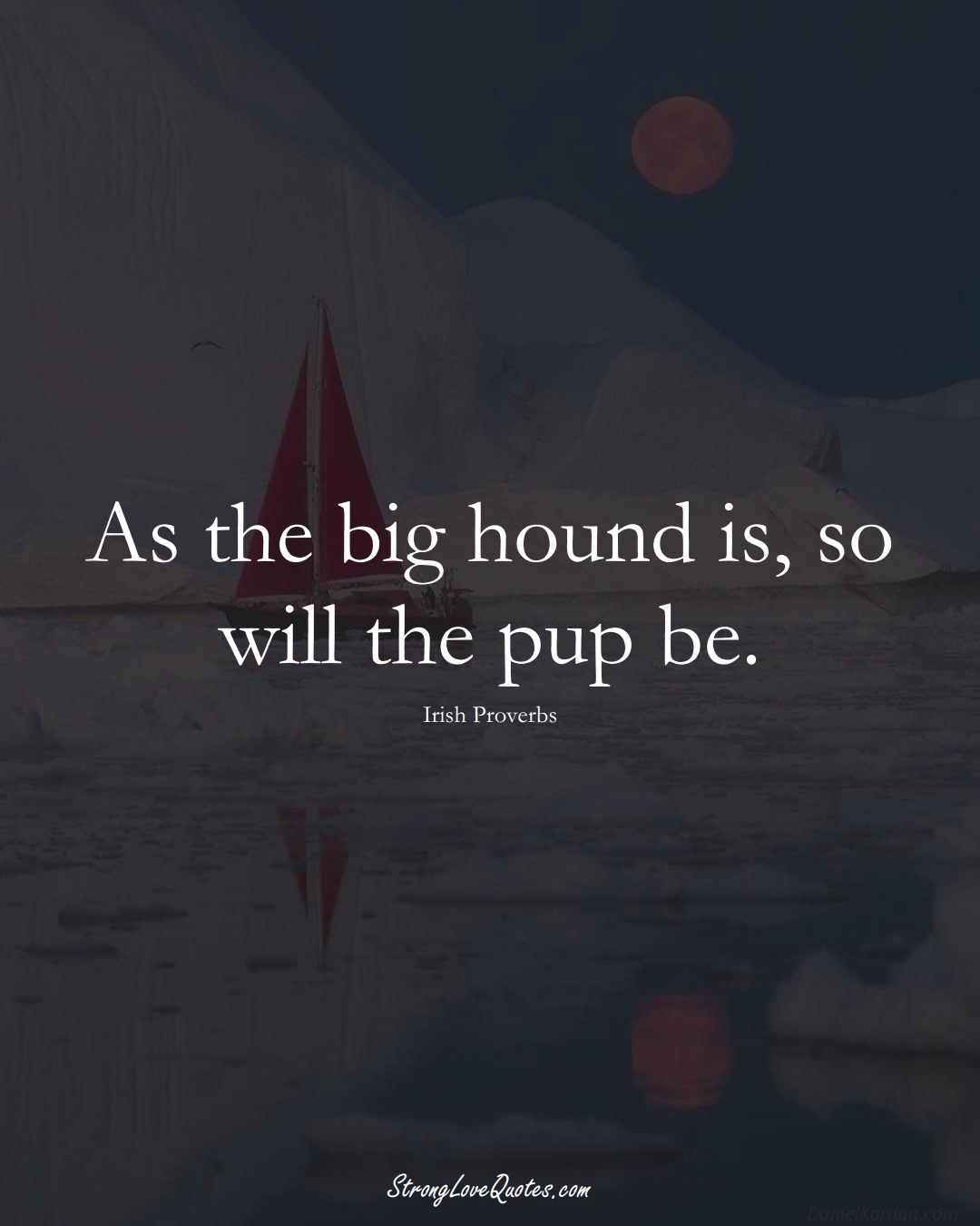 As the big hound is, so will the pup be. (Irish Sayings);  #EuropeanSayings