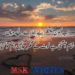 Bewafa Poetry In Urdu 2 Lines