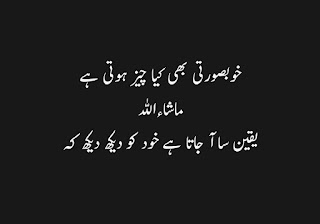 funny urdu quotes 17