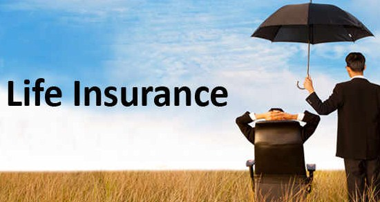 Top 10 Best Life Insurance Companies in the USA