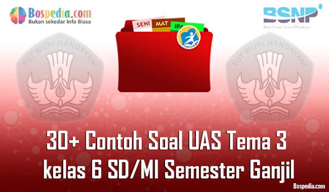 30+ Contoh Soal UAS Tema 3 untuk kelas 6 SD/MI Semester Ganjil Terbaru