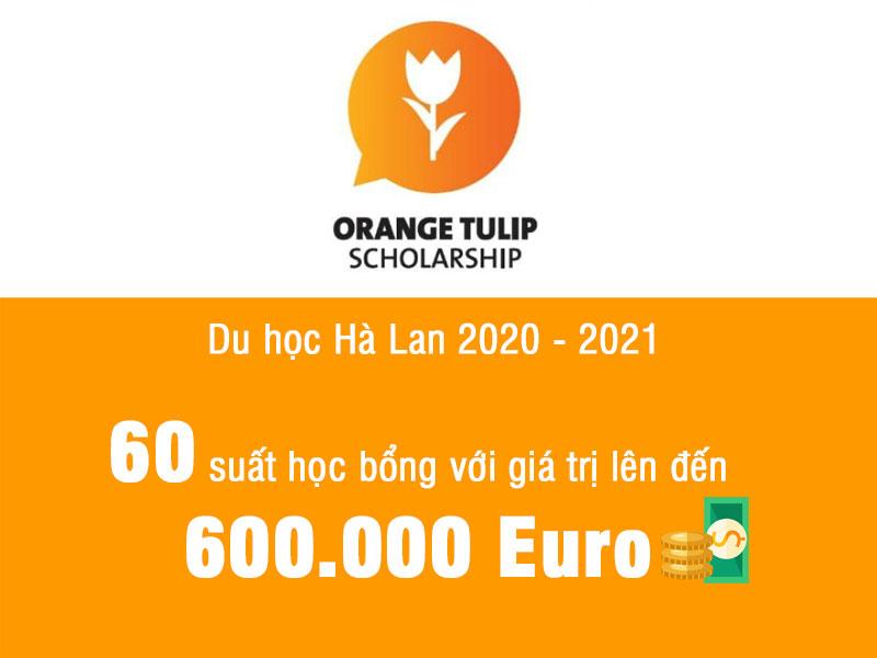 Du học Hà Lan: Danh sách học bổng Orange Tulip Scholarship năm 2020 – 2021