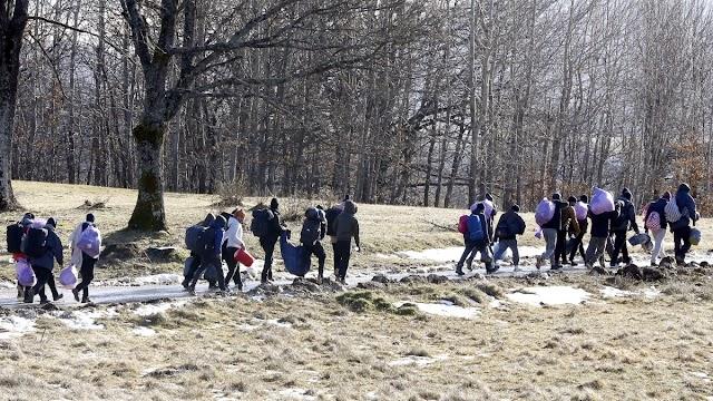 A Helsinki Bizottság szerint továbbra is illegálisan kényszerítik vissza Szerbiába a migránsokat