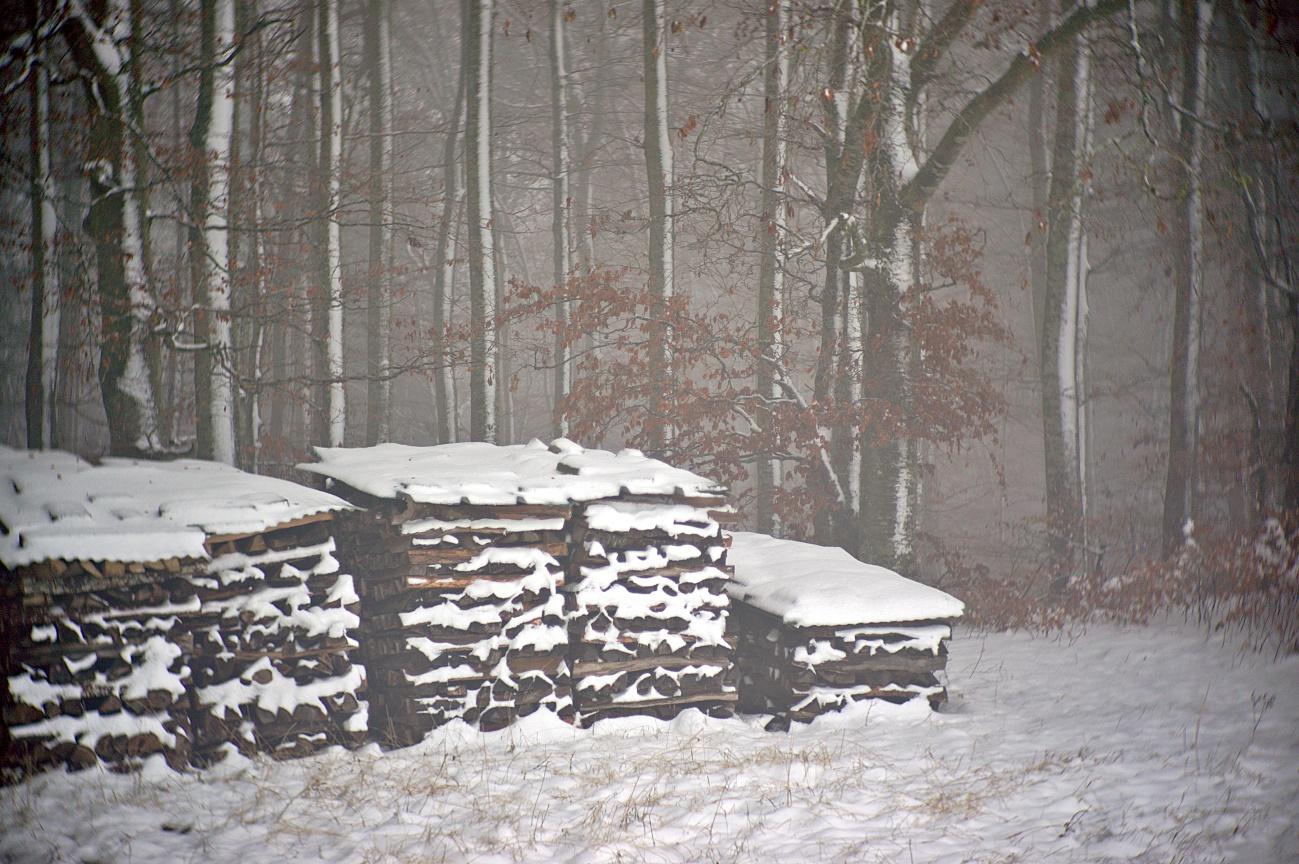 Schnee & Nebel (2)