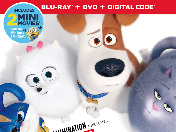 Secret Life of Pets 2 - On Digital August 13 and 4K, Blu-ray and DVD August 27 From Universal Home Entertainment