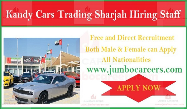 Kandy Cars Trading Sharjah Hiring Staff | Automobile Jobs in UAE