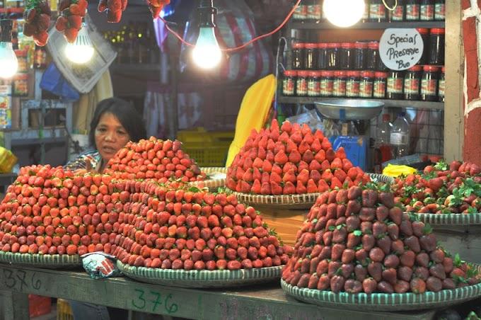 A Trip to Baguio City Public Market