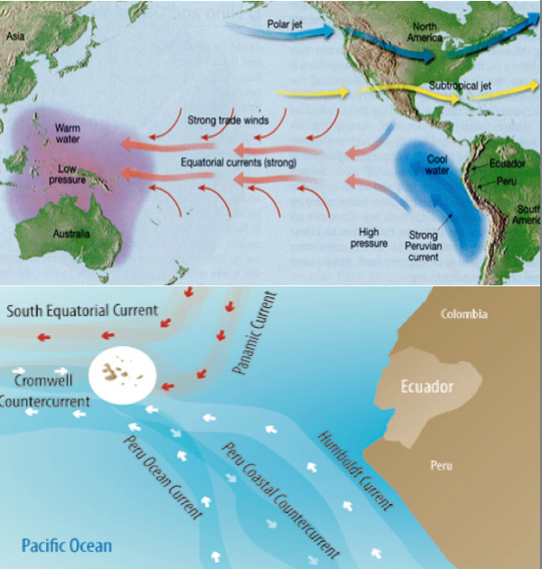 Image result for winds map   Ocean current, Largest ocean ...  Peru Prevailing Winds