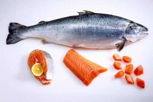 Harga Ikan Salmon Untuk Konsumsi Terbaru 2020