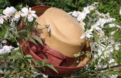 englischer Gartenhut