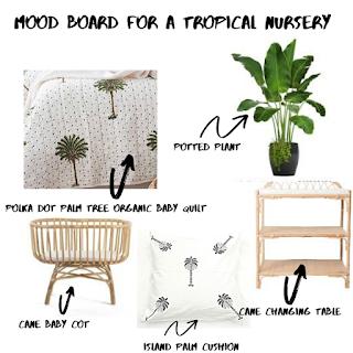 Palm Tree Nursery