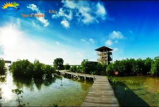 gardu pandang mangrove karimunjawa