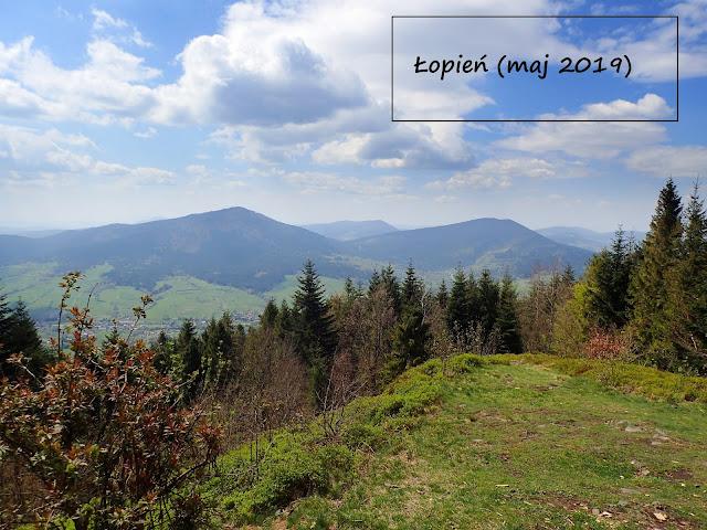 Łopień (951 m n.p.m.) z Przełęczy Rydza Śmigłego