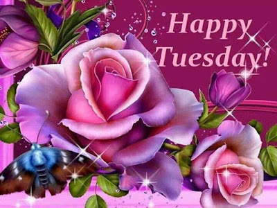 good morning happy Tuesday images Download