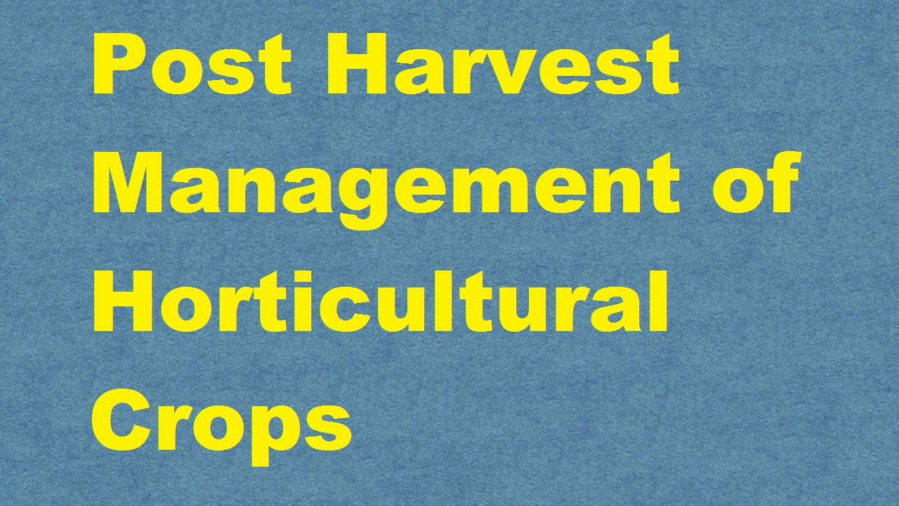 Post Harvest Management of Horticultural Crops ICAR E course Free PDF Book Download e krishi shiksha