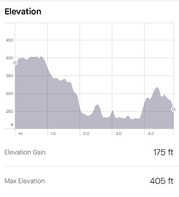 Elevation graph of my run. Most of it is downhill, with a steep section on the first half. There is a steep uphill in the last 20% or so.