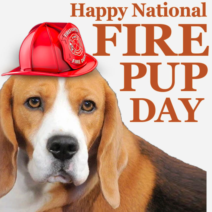National Fire Pup Day Wishes Sweet Images