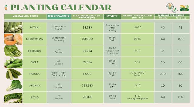 urban gardening, plant calendar, bureau of plant idustry, vegetable garden, urban planting, gardening, farming