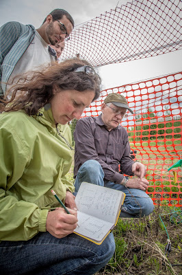 Grad student Amanda Byrd demonstrates soil measuring techniques.