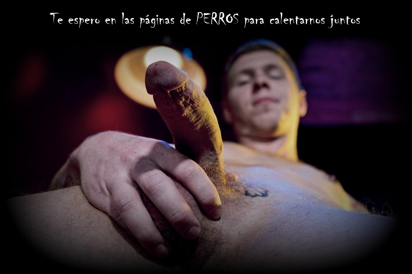 https://nuevaediciondeperros.blogspot.com/2019/11/el-alfa-y-su-perra-18-el-video.html