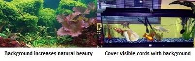 Pros of aquarium background