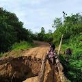 Jembatan di Desa Temoyok Ambruk, Akibat Curah Hujan Tinggi