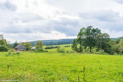 Zielone łąki w okolicach Izb