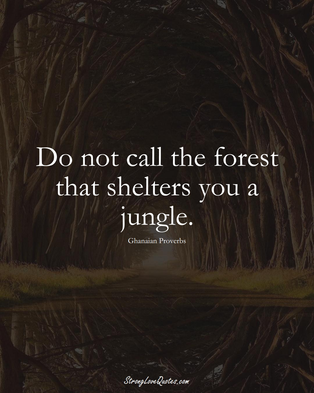 Do not call the forest that shelters you a jungle. (Ghanaian Sayings);  #AfricanSayings
