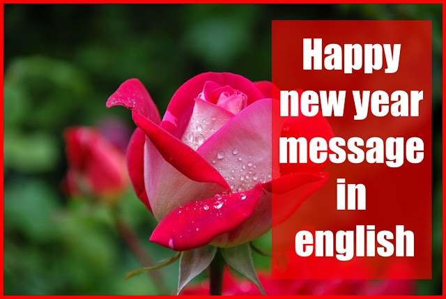 2020  Happy new year message in english