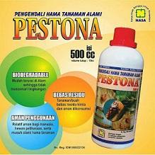 Pestona